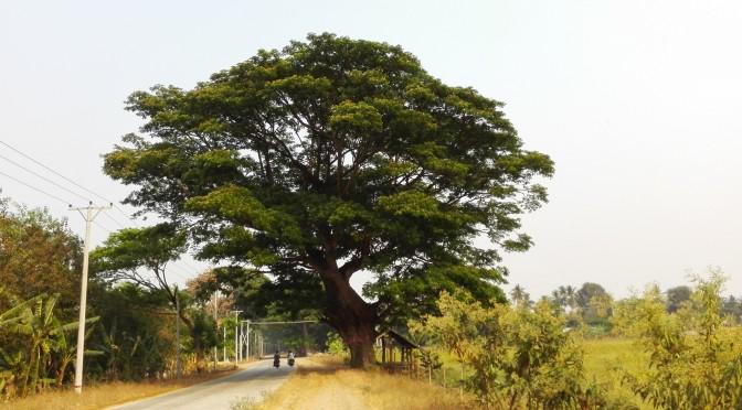 Birmània-Recorregut detallat/Detailed route-2