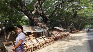 Immensos arbres, meravellosa ombra i cadires en venda.