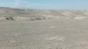 Quilòmetres i més quilòmetres de desert