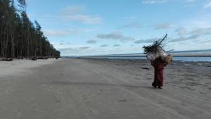La platja i les seves veïnes