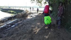 Caminant entre aigua i fang
