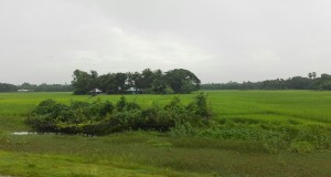 I entre aigua i arròs, algunes casetes o poblats com illes al mig de llacs