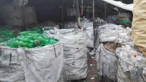 Reciclatge ampolles de plàstic. Sorprenent recollida selectiva