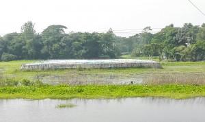L'aigua s'ho menja tot, pel que han de crear illes artificials de sorra per construir al damunt