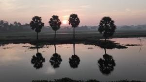 Dolç despertar del dia amb el Sol acaronant la Terra