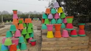 Colors pel jardí de casa