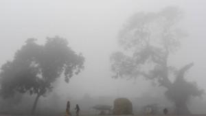 La vida local continua malgrat la intensa boira i fred