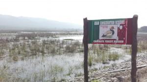 Reserva de conservació dels aiguamolls d'Asan