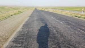 El llarg camí cap a casa