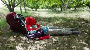 Quan la calor del migdia es fa notar afegida al dormir amb prou feines 5 hores degut a la nostra vida social, una curta migdiada és tan necessària com revigoritzant