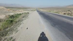Molts quilòmetres de desert, de no-res, cap ombra i molta calor per endavant