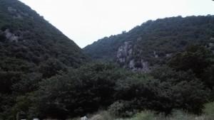 Parc nacional de Golestan. Vistes des de dins la tenda de campanya