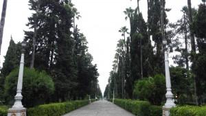 Passeig a Ramsar