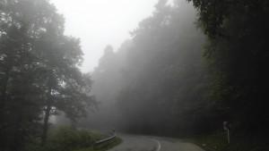 Quan deixem la carretera principal que corre entre el Caspi i les muntanyes per endinsar-nos dins aquestes, el camí, el paisatge esdevé completament diferent. Els gairebé permanents núvols i l'espessa boira nodreixen els milions d'arbres a l'hora que pinten un fabulós i fantasmagòric escenari natural