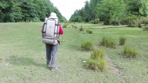 Trobem una preciosa ruta en plena natura