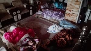 Dormen al terra