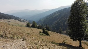 Deixant la gran vall i fent els últims metres abans d'assolir el pas
