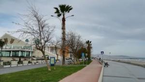 La sortida de Samsun seguint el front marítim