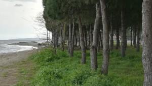Seguint la costa i deixant enrere Samsun (al fons a l'esquerra)