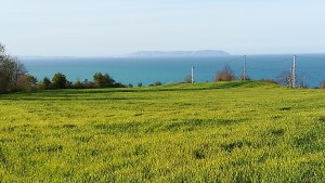 Des de Gerze és pot veure Sinop, allà lluny a l'altra banda de la badia