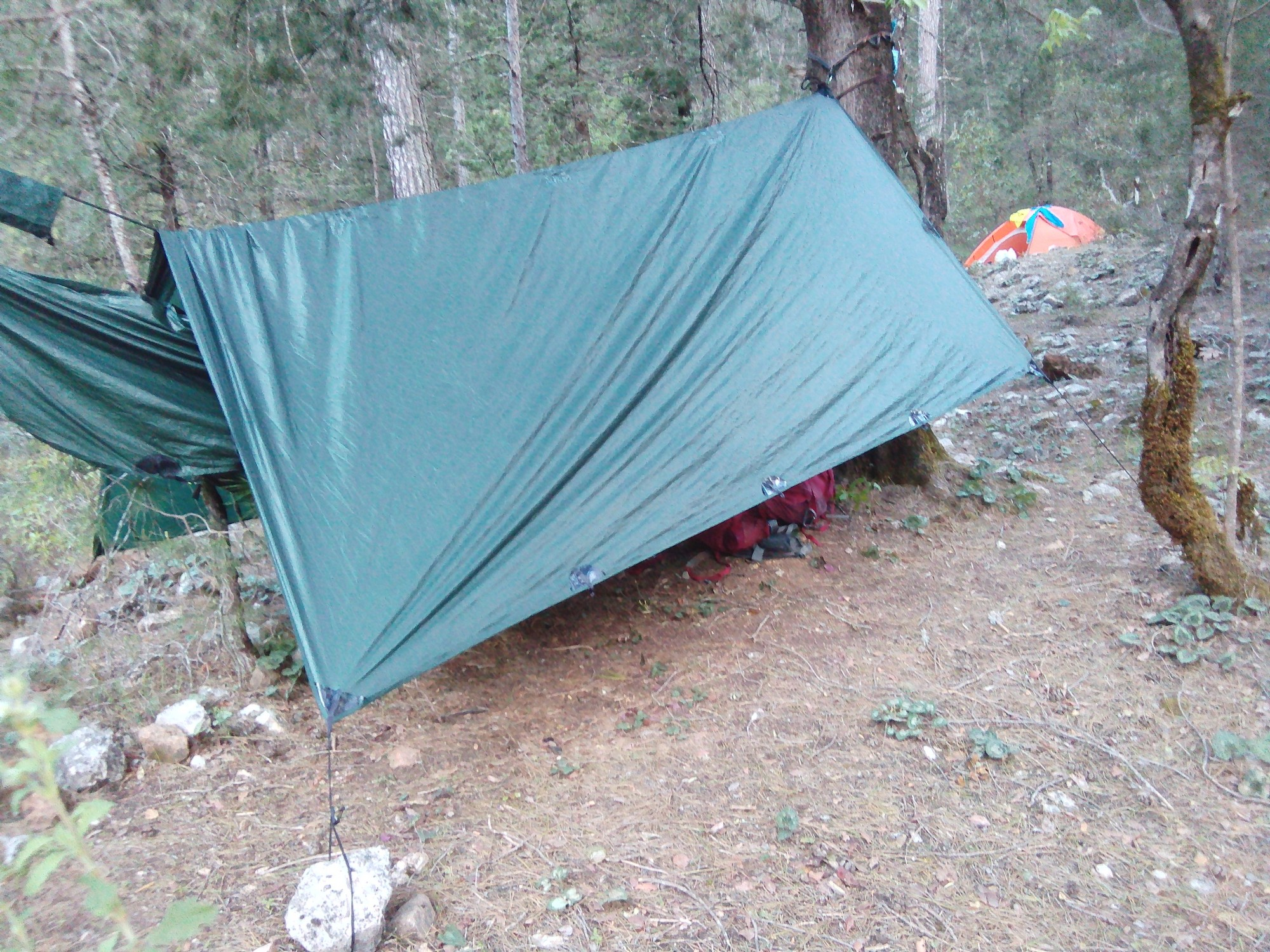 My hammock and tarp combination