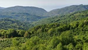 Paisatge quan la ruta s'emparra muntanyes amunt. Al fons, el mar Negre