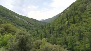 Vall i muntanyes