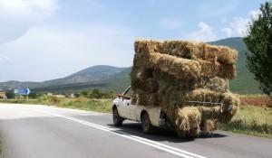 Vehicle molt ben aprofitat