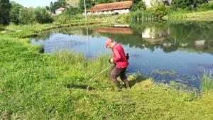 Lluís afaitant el jardí