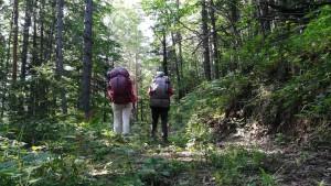 Tots dos caminant pel bosc, buscant el camí, construint la nostra ruta cap a casa, pas a pas