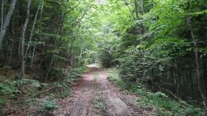 Quan el camí és senzilla i meravellosament perfecte