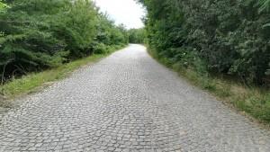 Llargs trams d'aquesta vía són un veritable mosaic a l'aire lliure. És un punt intermig entre les vies empedrades romanes i l'asfalt. Una feinada brutal. Per mi, quelcom molt admirable