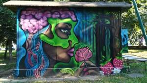 Art de carrer a Bitola. A nosaltres també ens encanten les flors