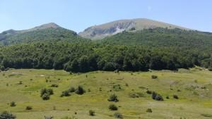 Cim entre el llac Prespa i el llac Ohrid