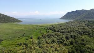 Vistes del llac Skadar