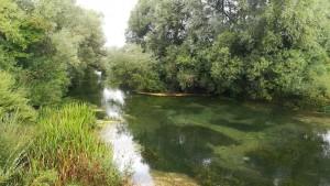 Un raconet bonic del riu Sturba