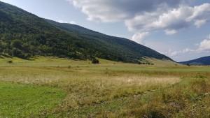 Segona vall amb boscs densament arbrats