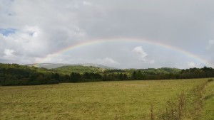 Ja que la pluja ens dona tant pel sac, al menys podem gaudir d'un sempre bonic arc de sant Martí