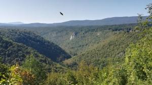 Vistes de les muntanyes i la gorja del riu Korana amb gran ocell sobrevolant-nos