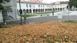 Plaça de Gorizia amb catifa de fabulosos grocs, taronges i marrons que, juntament amb la temperatura i el temps, ens fan sentir plenament la tardor