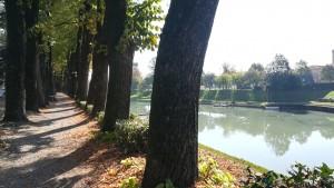 Motta di Livenza amb riu Livenza