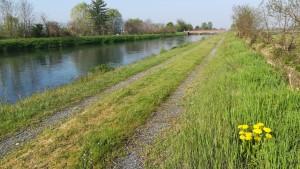 Meravellós camí al llarg del canal Cavour
