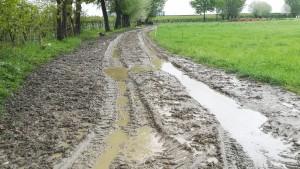 Després de tanta pluja, els nostres camins preferits estan… impracticables. Hem de buscar vies alternatives
