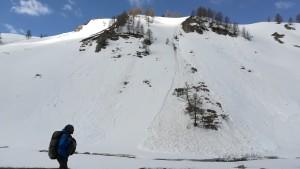 Passejant entre la neu