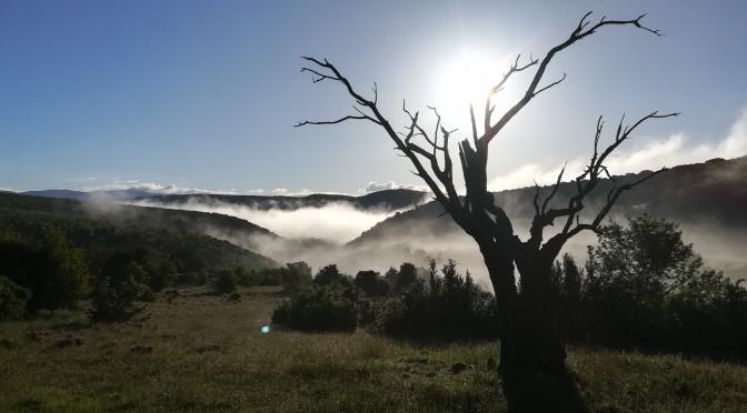 Sisteron – Avinyó
