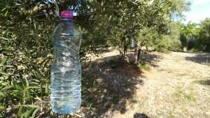 Protecció per les oliveres