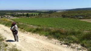 Patint un camí pedregós sota un sol potent, però envoltats de moltes boniques vinyes