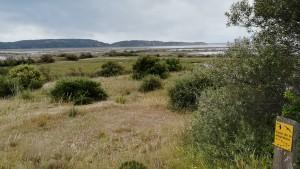 Reserva natural per la protecció dels ocells i la seva migració