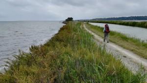 Caminem entre canals, llacs, aigua i més aigua