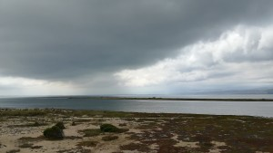 El fort vent ens porta una tempesta